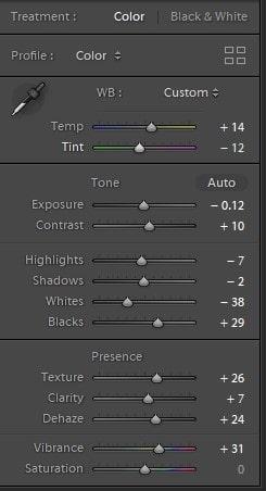 Basic Panel for adjusting white balance